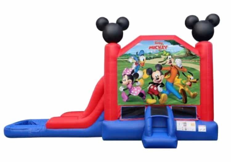 Mickey and Friends Combo Wet or Dry
