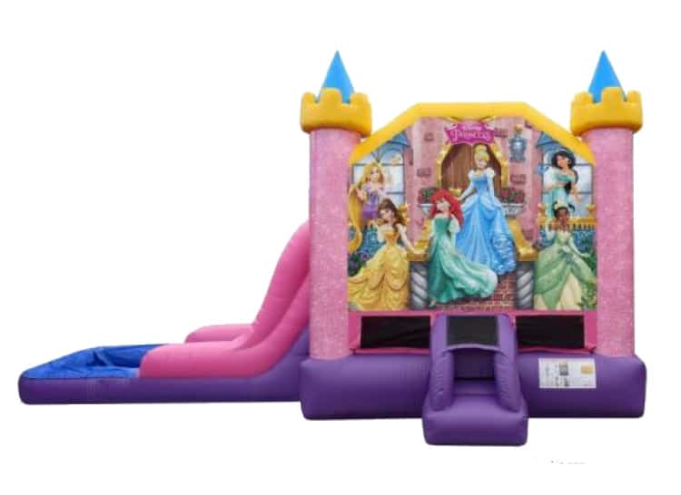 Disney Princess Combo Wet or Dry
